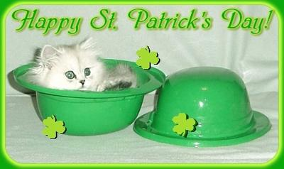 Happy St. Patrick's Day Kitty In A Green Hat