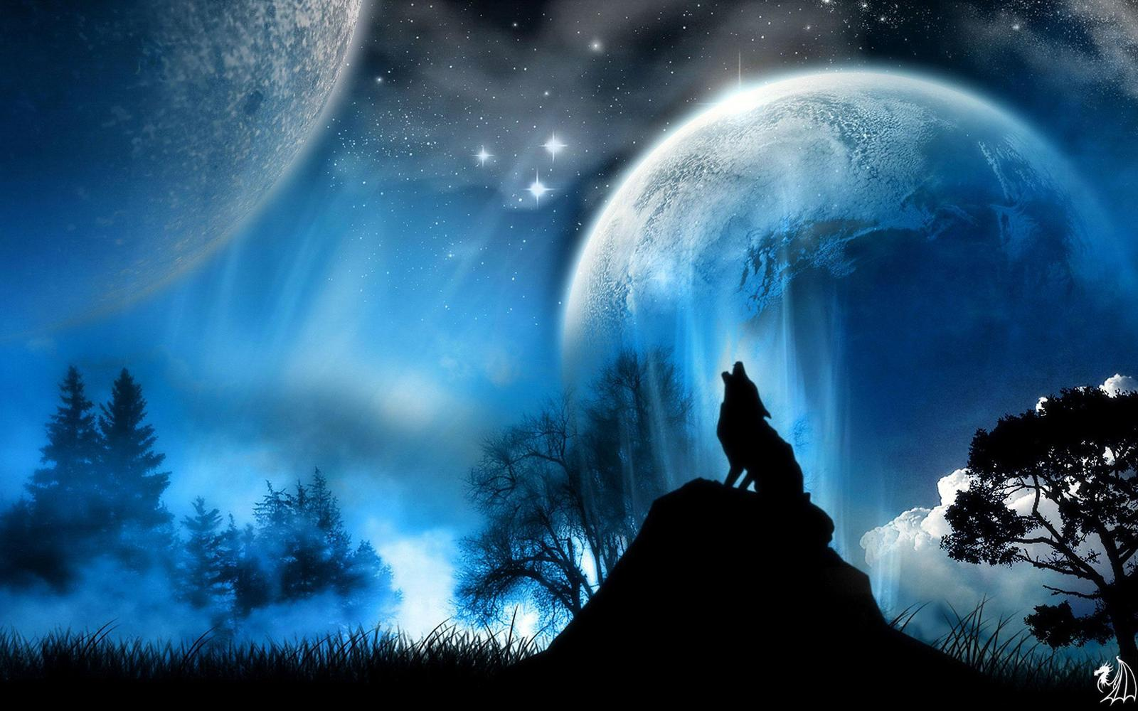 Howl At The Moons